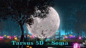 Tarsus 5D - Soma